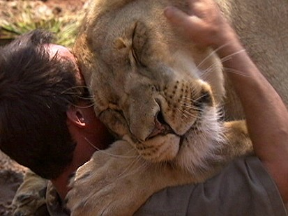 Don T Trust Girl Wallpaper Living With Lions Trainer Tries To Tame Namibia S Wildest