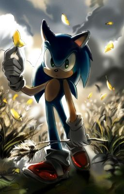 Two Cute Friends Wallpaper Sonic The Hedgehog X Reader Two Hearts Become One Sequel