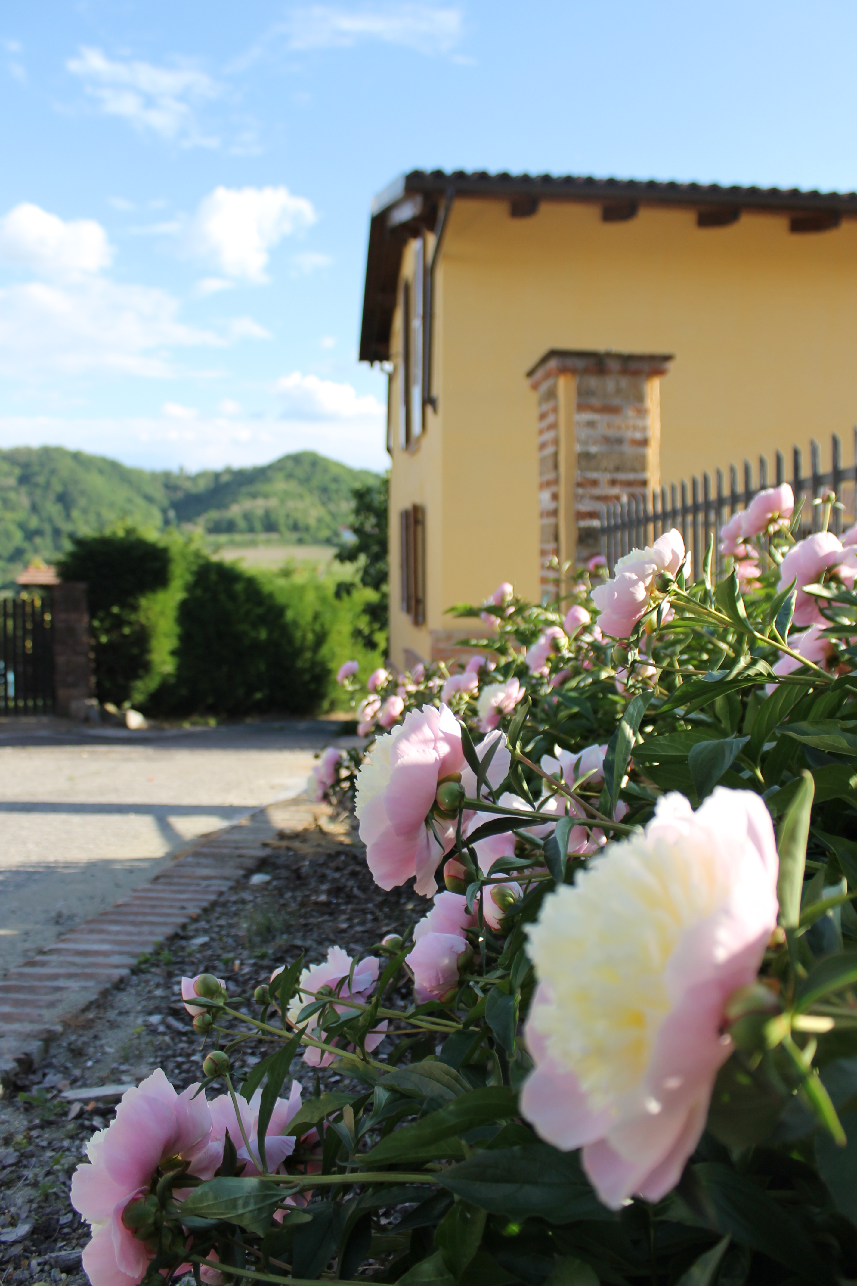 Barbera S Home Charme In Monferrato With Pool Houses For Rent In Camino Piemonte Italy