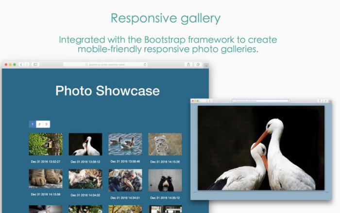 4_Responsive_Photo_Grid_Image_Gallery_Maker.jpg