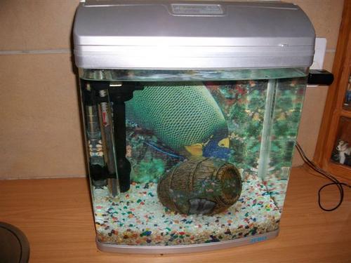 Fish Tanks & Aquariums   Jebo R338 Aquarium was sold for R350.00 on 16