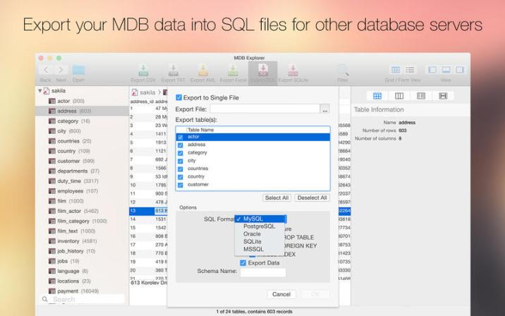 5_MDB_Explorer_Access_Viewer,_read_and_export_Access_files.jpg