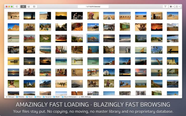3_Fileloupe_-_Media_Browser.jpg