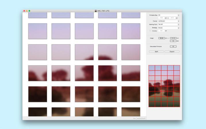3_Split_Lab.jpg
