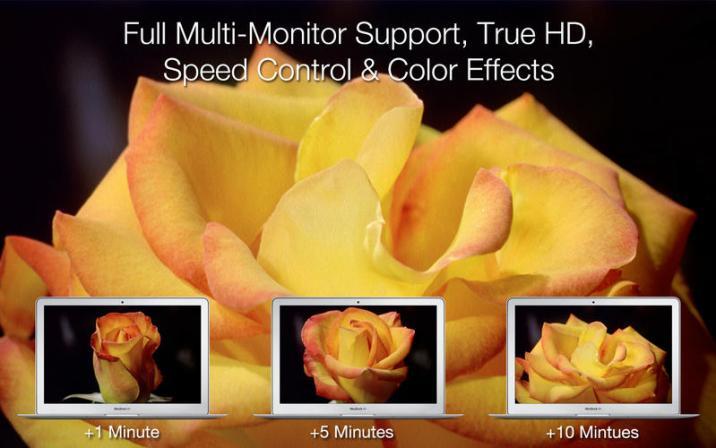 3_Magic_Flowers_-_Living_Wallpaper_Screen_Saver.jpg