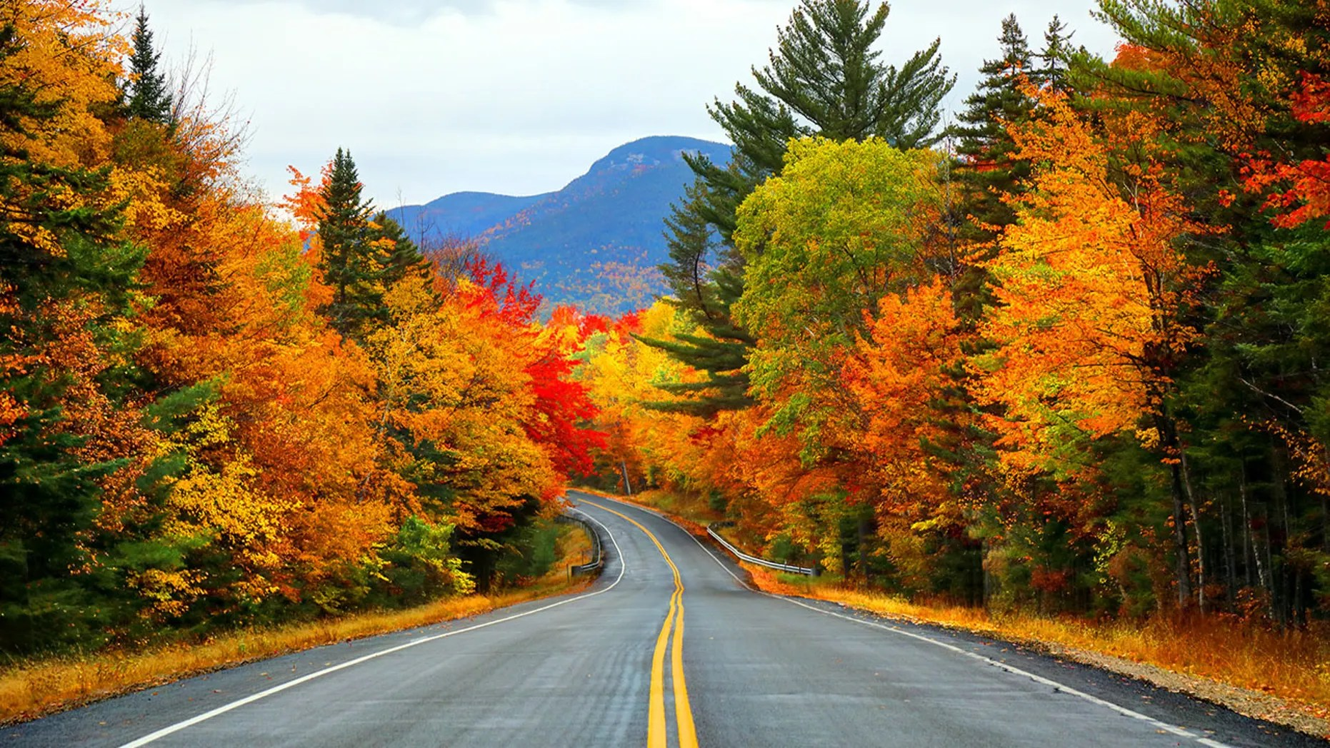 New England Fall Foliage Desktop Wallpaper Where To See The Best Fall Foliage Across The Country