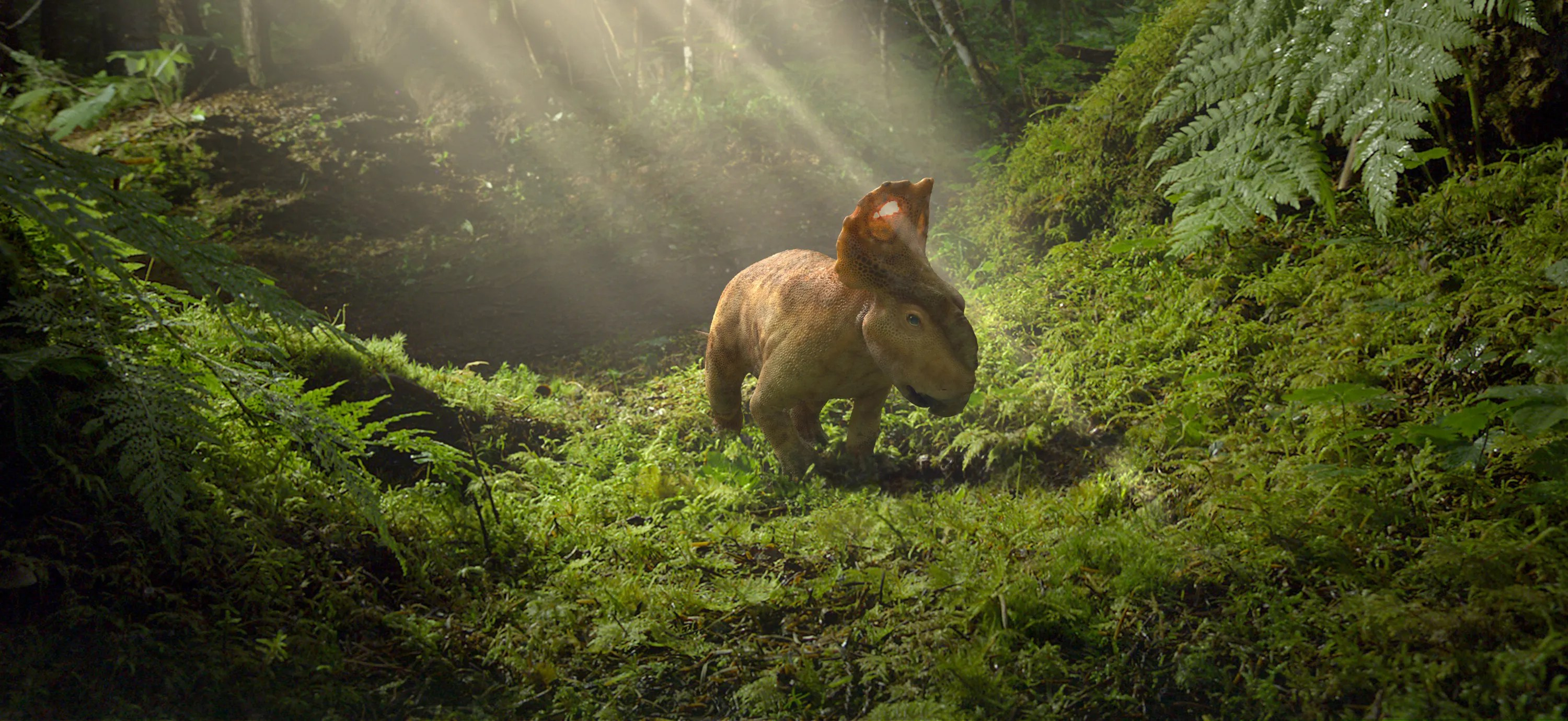 Walking With Dinosaurs 3d Wallpaper Walking With Dinosaurs Feathered Furry And Fierce Fox News