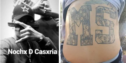 Prosecutors say photos show MS-13 gang members flashing gang signs and displaying guns and showing off an MS-!3 tattoo.