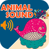 HUANG YIN - Animal Sounds Boards HD artwork