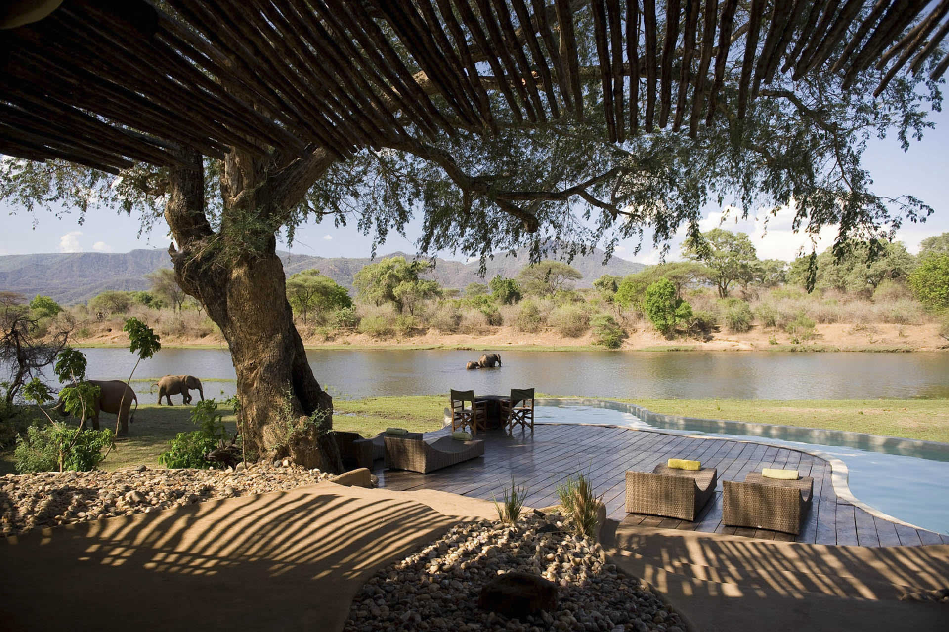 Bank Of Zambia Home Zambia Luangwa Valley Home Of The Walking Safari