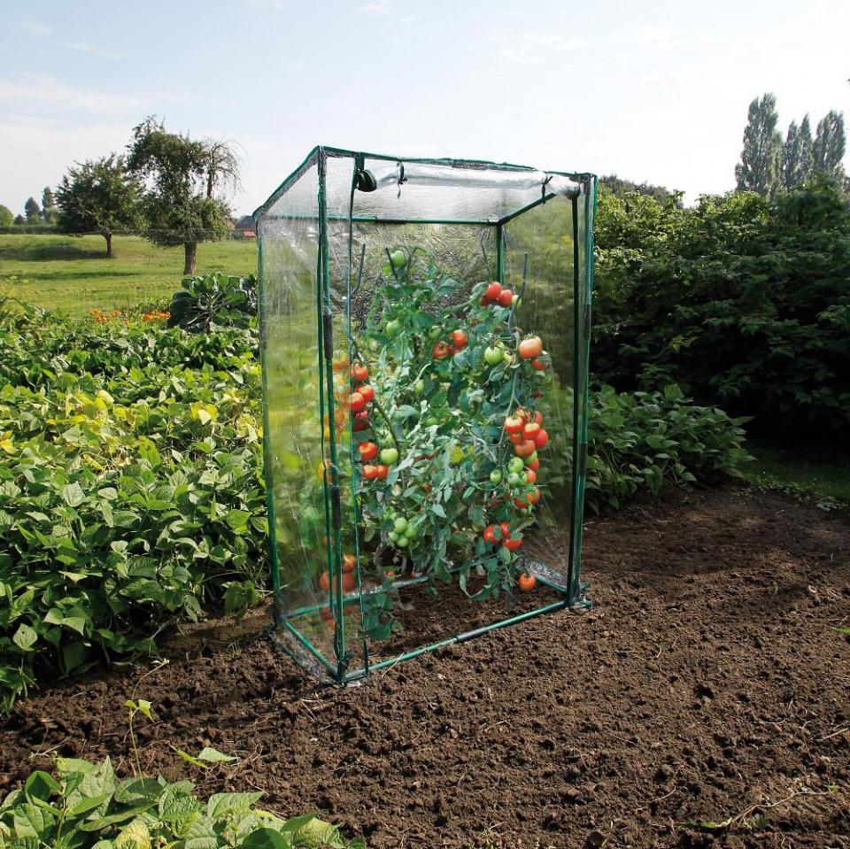 Emejing Mini Serre De Jardin Carrefour Ideas - House Interior ...