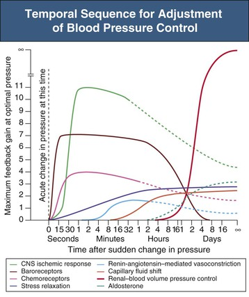 How To Graph Blood Pressure Over Time kicksneakers - how to graph blood pressure over time