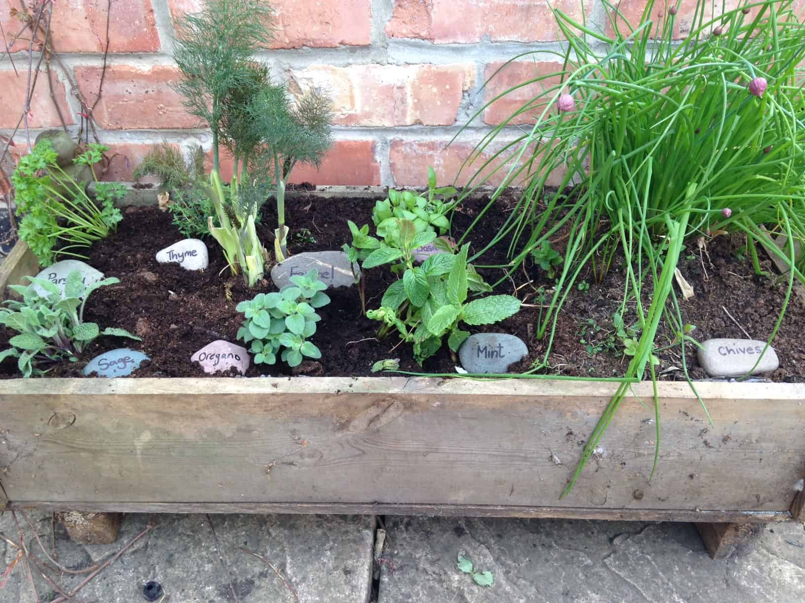 Herb Garden Container Growing A Container Herb Garden A Beautiful Space