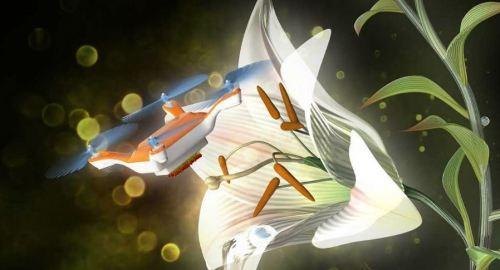 abelhas drones japão
