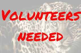 Volunteers Needed for High-Interest Day –February 2nd