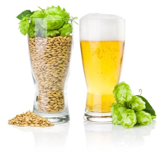 malt-hops-beer
