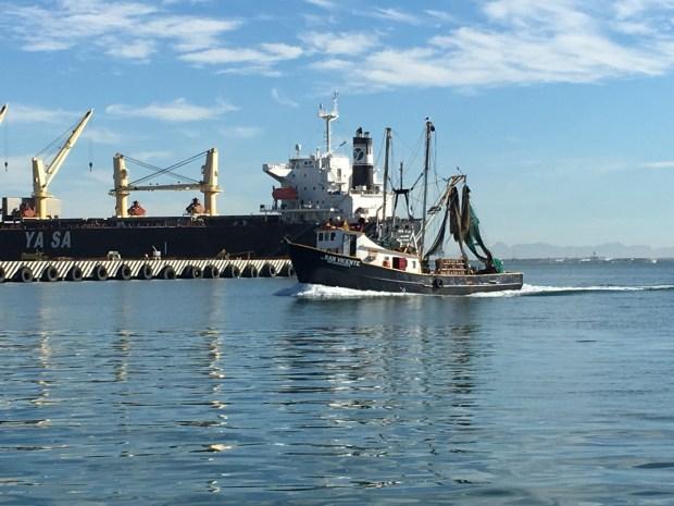 Local fishermen returning to Guaymas