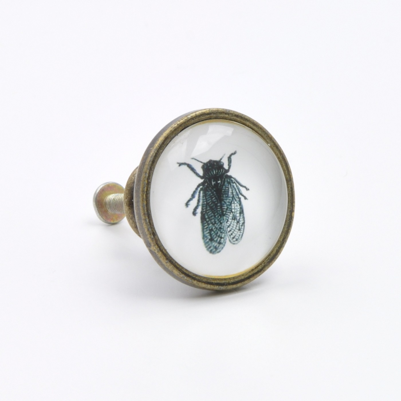 Kitchen Cabinet Bugs Vintage Fly Insect Bug Knob Pull Handle For Cupboards