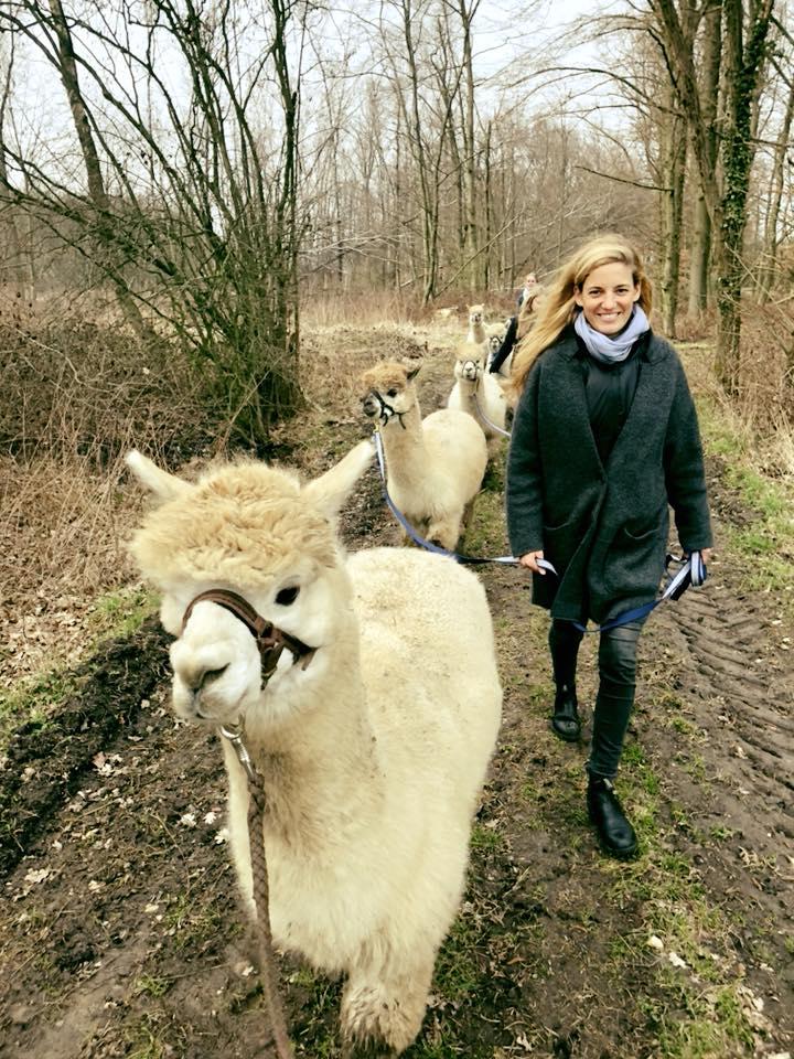 Alpaka Bettdecken  Fotos Und Impressionen Abolengo De Alpaca