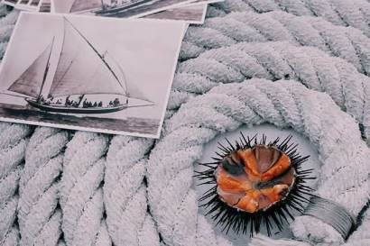 When in Barcelona, join us for a sea urchin and fishing tour
