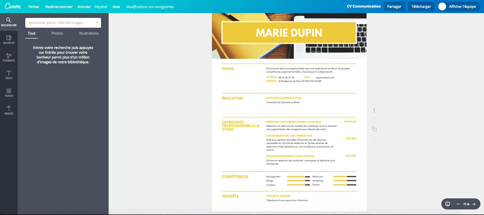 offre emploi titre cv