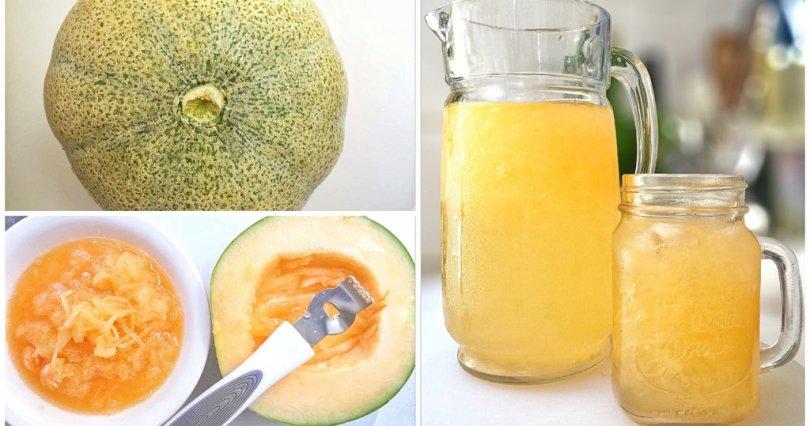 Melon Scaper