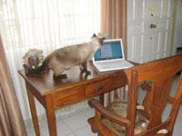 writing_table.jpg