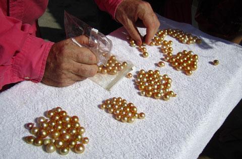 grading-golden-pearl-1