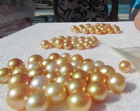 grading-golden-pearl