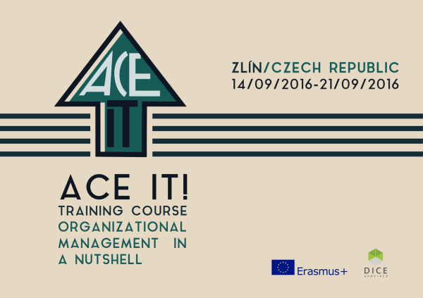 Ace It - Organisational Management in A Nushell - abroadship.org