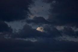 A super moon in Zurich