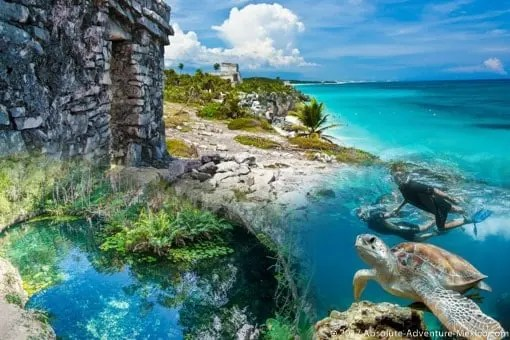 Quote Quote Wallpaper Tulum Private Tour With Snorkeling In Cenote And Swim With