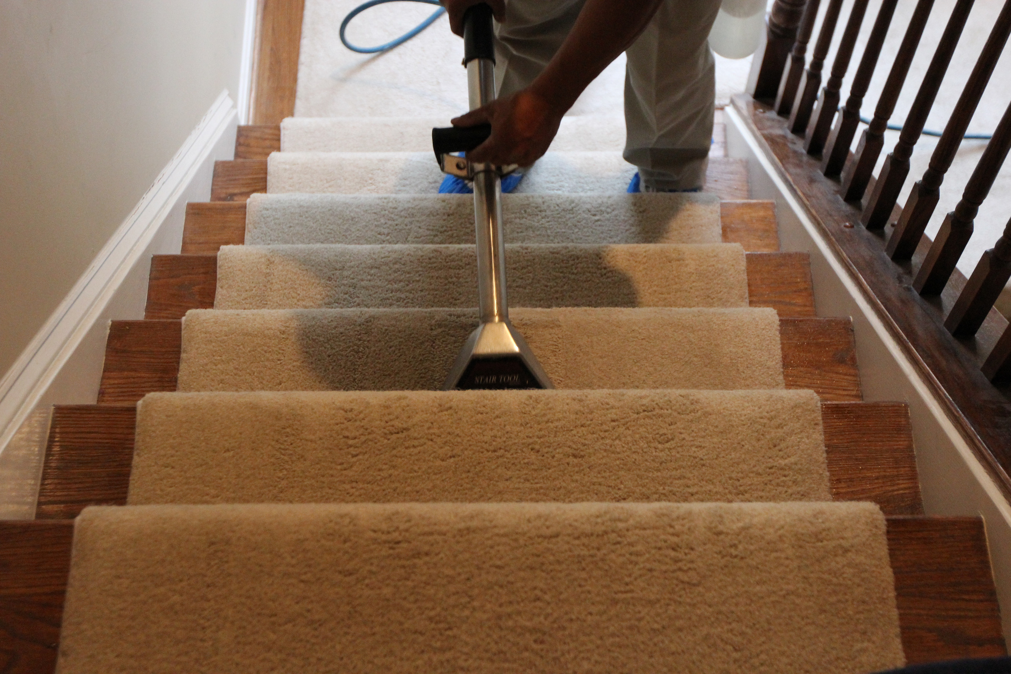 Carpet Cleaning Carpet Cleaning In Alexandria Fairfax Sterling Arlington