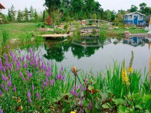 54ff53372b1f9-ww-private-pond-lgn