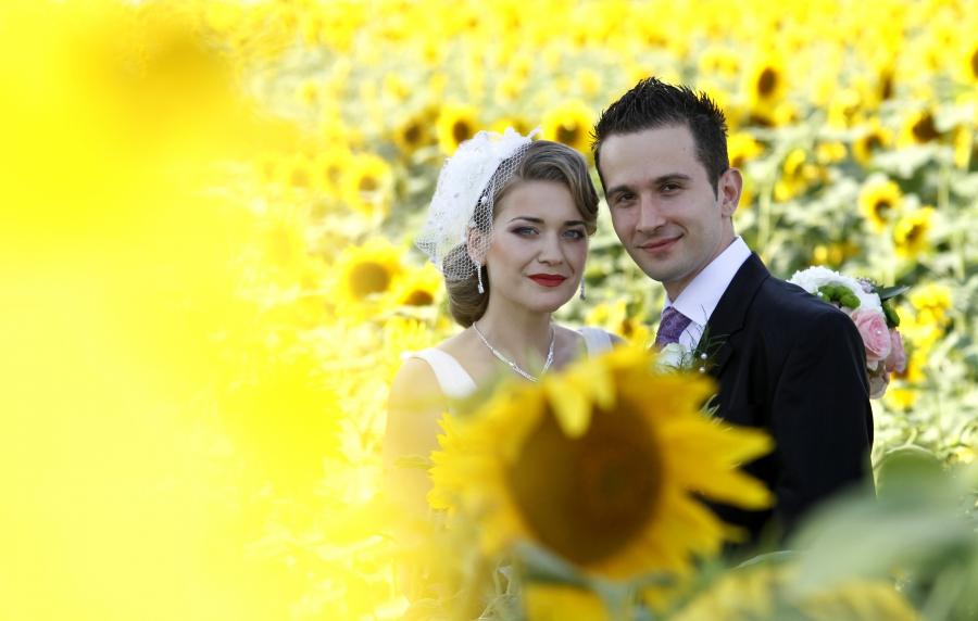 wedding sunflowers