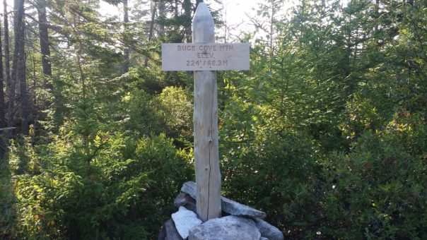 buck cove mountain trail