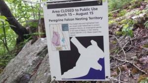 Sign for closing Orange & Black Path for the peregrine falcon