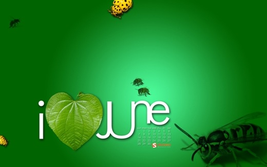 i-love-june