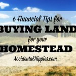 6 Financial Tips for Buying Land for Your Homestead