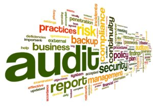 serviciul-de-audit-financiar