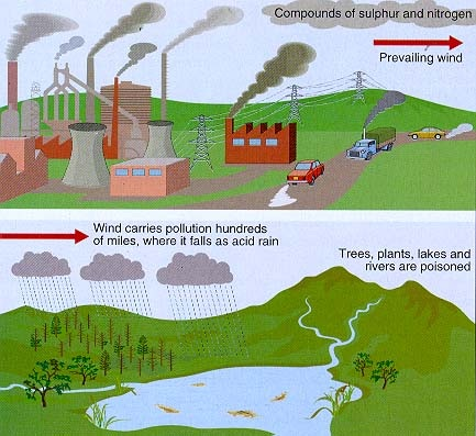 What is Acid Rain and How is it Caused?