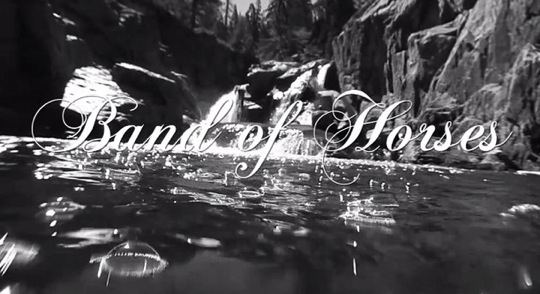 Band Of Horses- Dumpster World