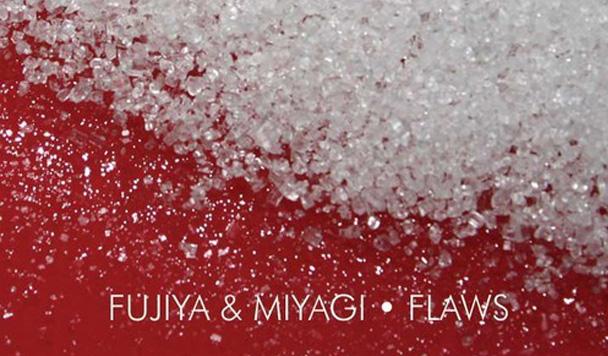 Fujiya & Miyagi - Flaws  [New Single]