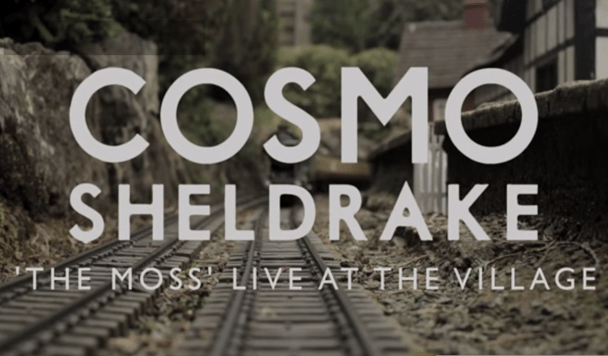 Cosmo Sheldrake - The Moss (Live at the Village) - acid stag