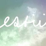 Estii - Embrace It All  [Premiere] - acid stag