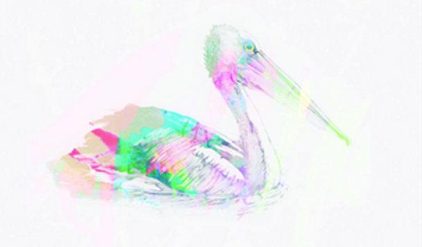 New Navy - Pelican  [New Single] - acid stag