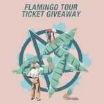 Flamingo Tour Competition - acid stag