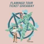 Flamingo Tour Competition - acid stag