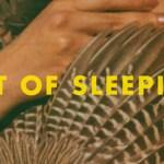 Art of Sleeping - Voodoo - acid stag