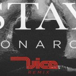Monarch - Stay (Vice Remix) - acid stag